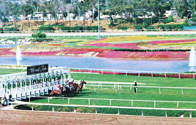The gorgeous colors of Hollypark when they cared about the place!